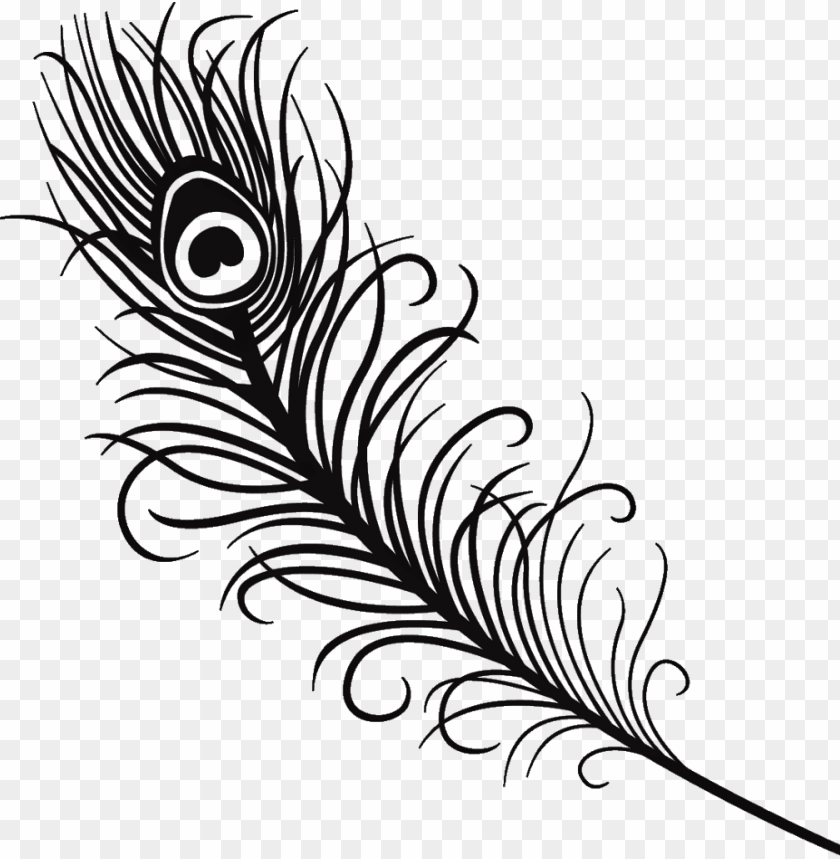 free PNG silhouette feather peacock peacockfeather black love - peacock feather clipart black and white PNG image with transparent background PNG images transparent