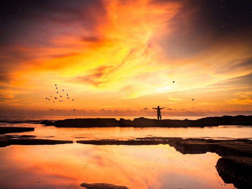 free PNG silhouette, loneliness, freedom, sunset, horizon background PNG images transparent