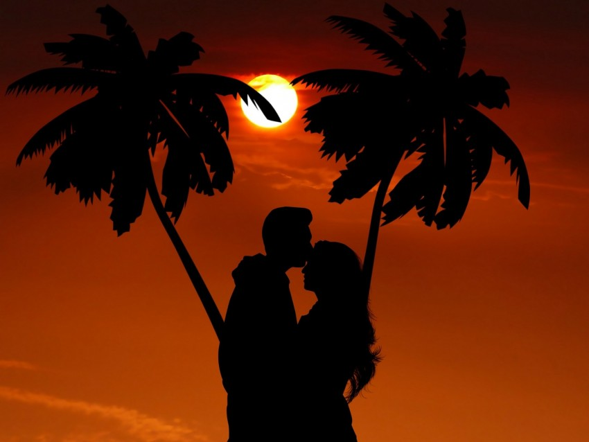 free PNG silhouettes, couple, hug, palm, night, romance background PNG images transparent