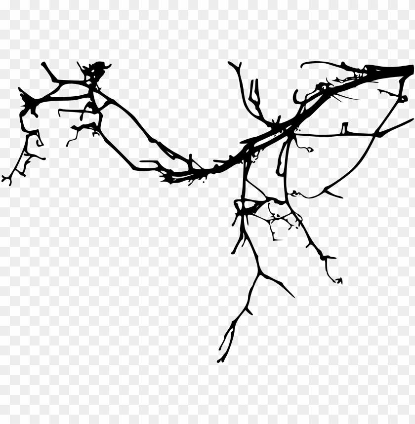 Simple Tree Branch Png Free Png Images Toppng