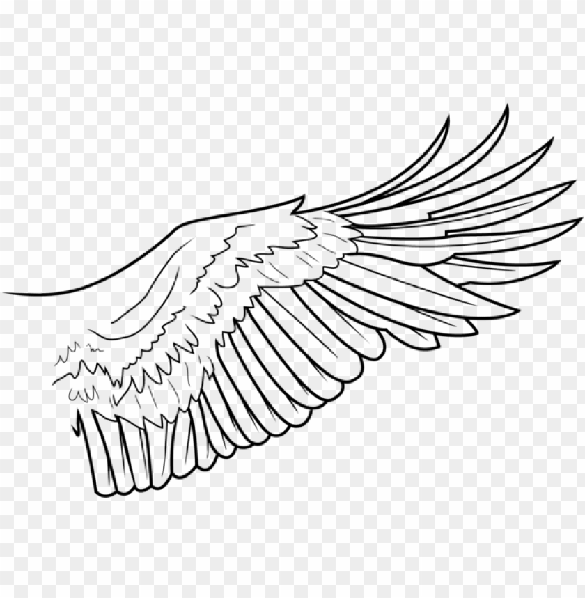 simple wing lines by freakzter eagle wings line drawi png image with transparent background toppng eagle wings line drawi png image with