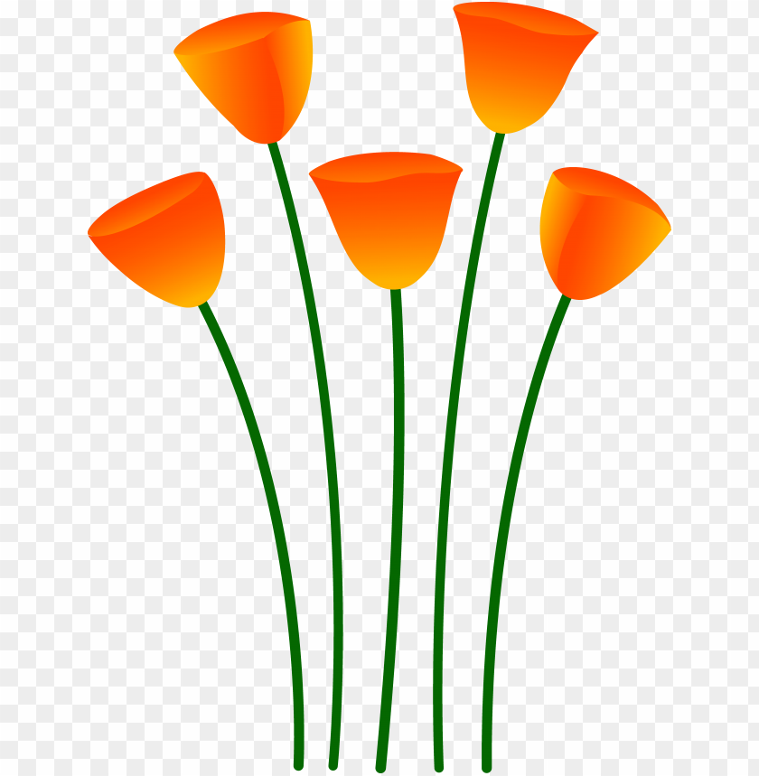 Single Flower In Vase Clip Art Orange Flowers Png Image With Transparent Background Toppng