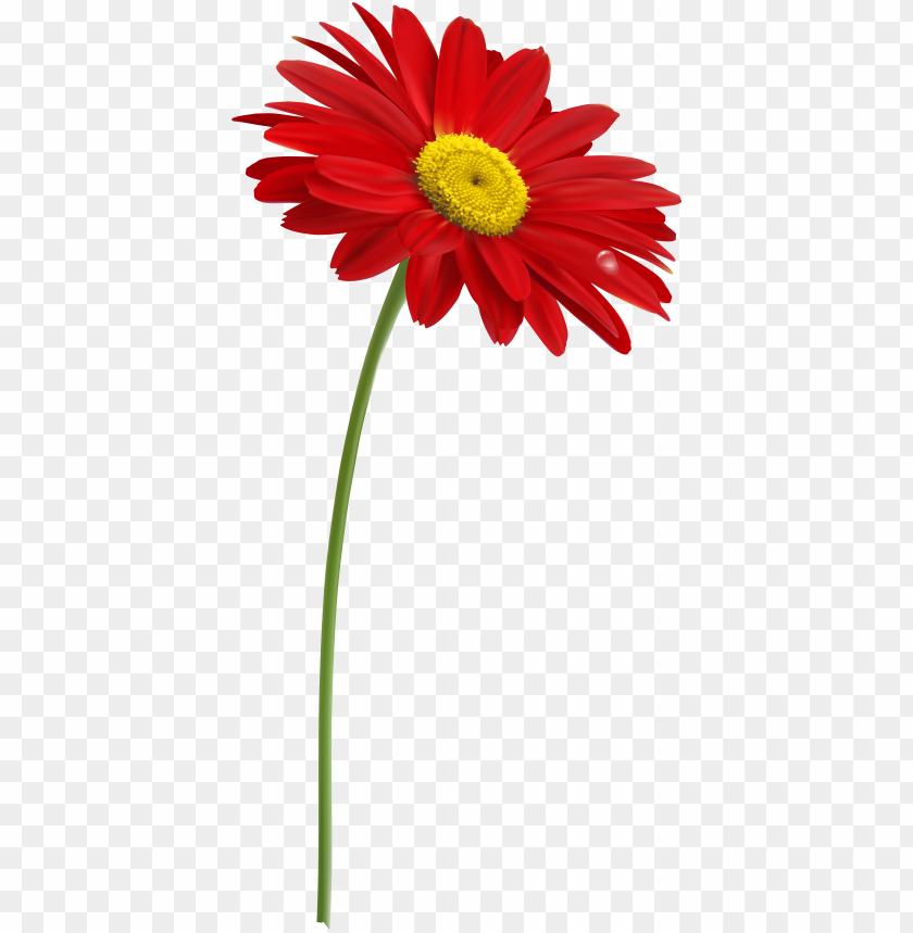 Clip art single flowers – Udo lindenberg single discography