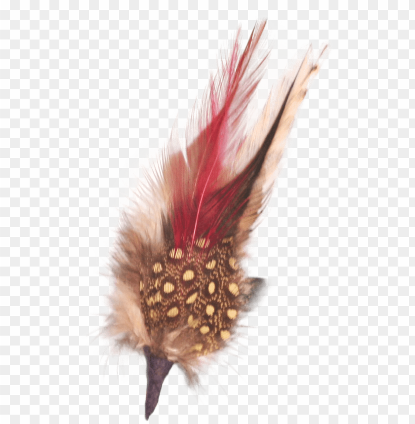 free PNG single german hat feather decor white/brown - german hat single feather decor white/brow PNG image with transparent background PNG images transparent