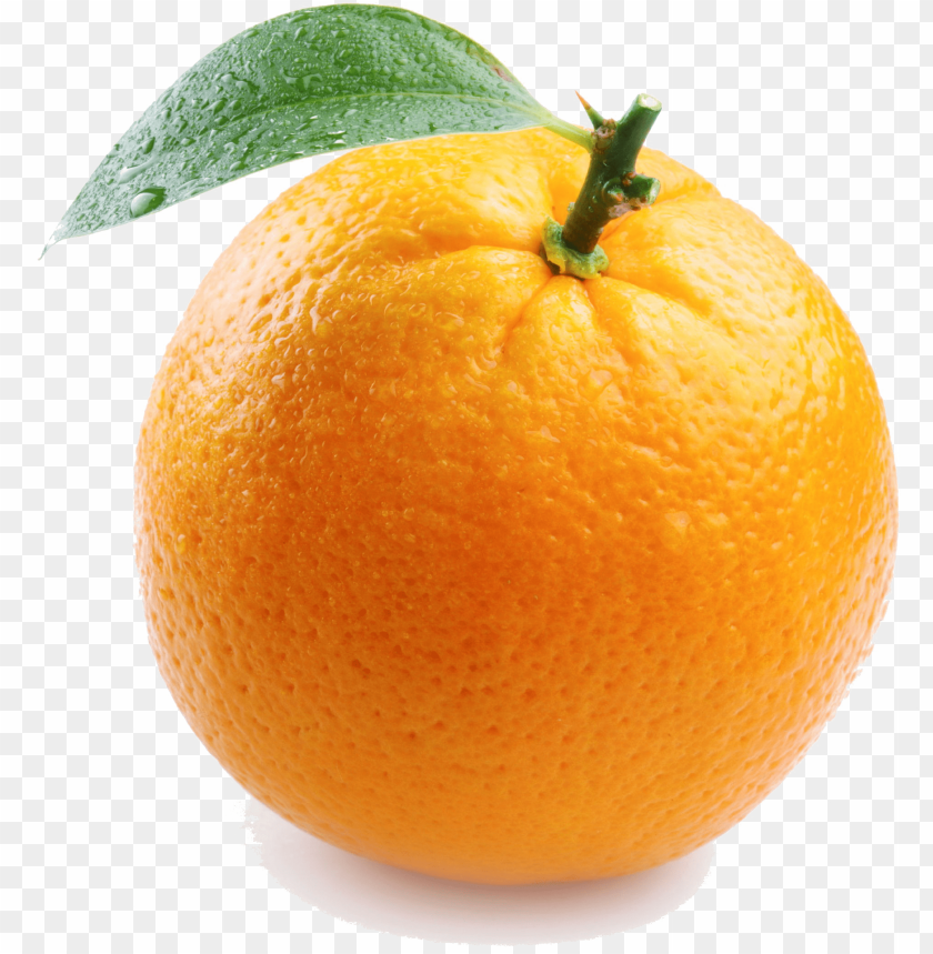 free PNG single orange transparent image - things that are color orange PNG image with transparent background PNG images transparent