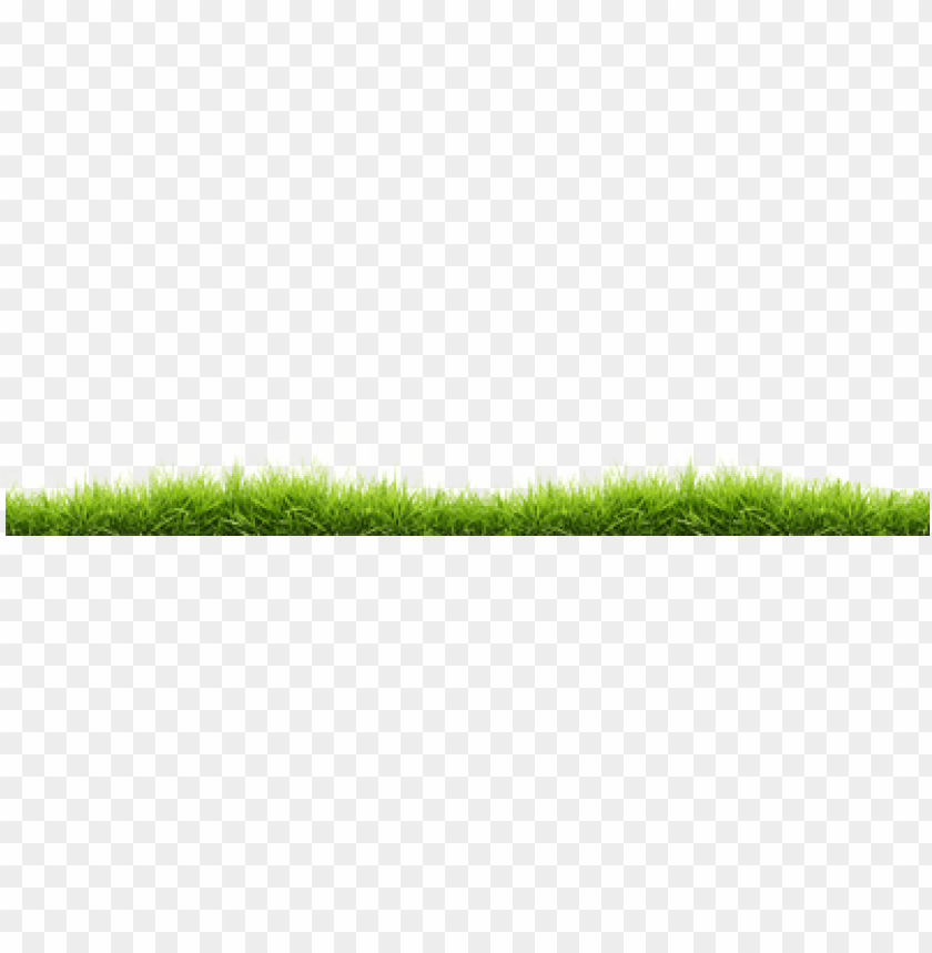 free PNG small line of grass - grass PNG image with transparent background PNG images transparent