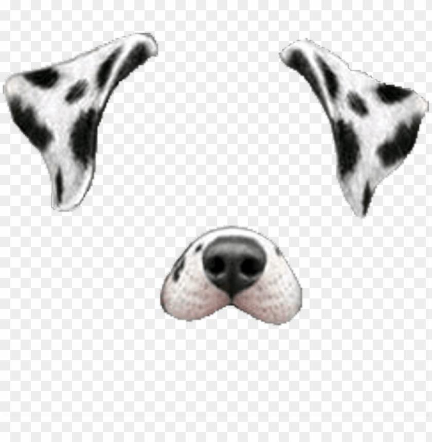 free PNG snapchat snapchatfilter filter dogface dog face white - snapchat dog filter PNG image with transparent background PNG images transparent