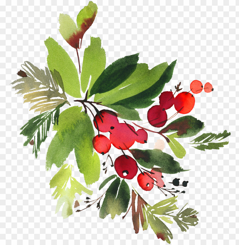 free PNG snowman watercolor flowers png - christmas berry watercolor PNG image with transparent background PNG images transparent