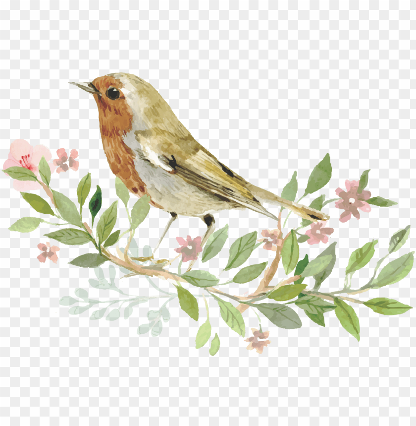 free PNG sparrow bird watercolor painting - invitation with bird PNG image with transparent background PNG images transparent