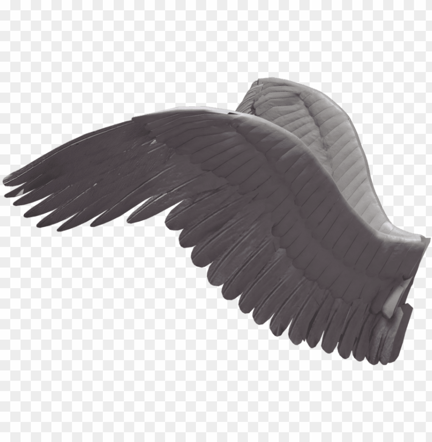 free PNG sphygmomanometer deviantart drawing poser - angel wings side view PNG image with transparent background PNG images transparent