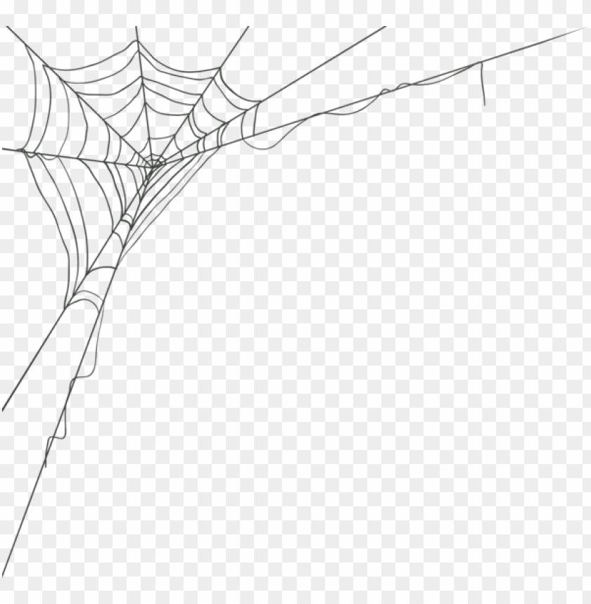 free PNG Download spider web corner png images background PNG images transparent