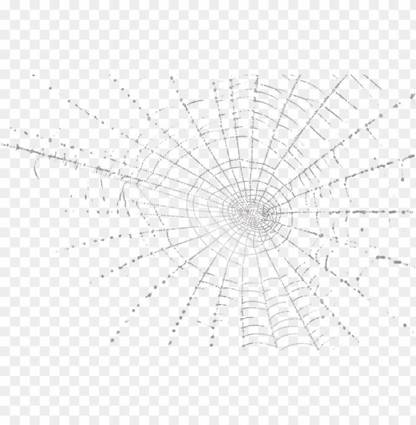 free PNG spider web - spider web psd PNG image with transparent background PNG images transparent