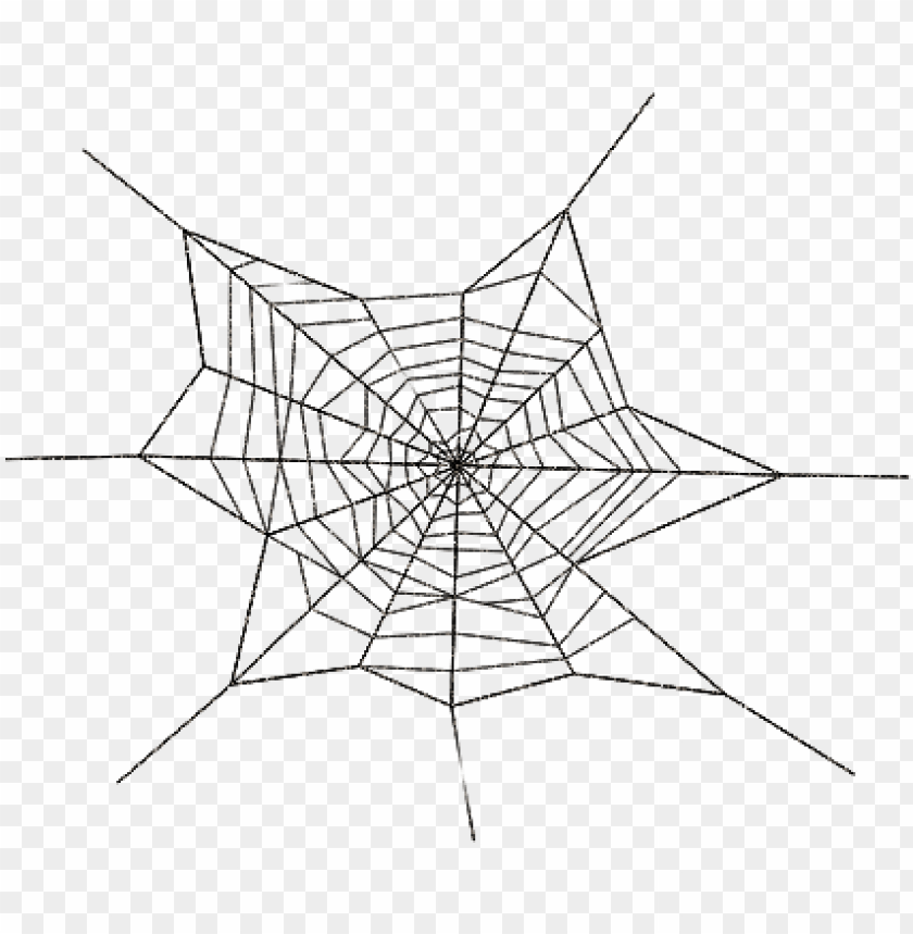 free PNG spider web transparent PNG image with transparent background PNG images transparent