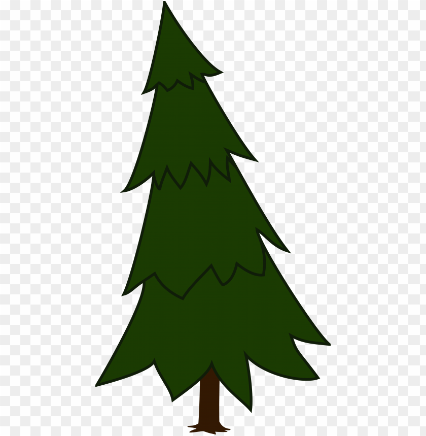 free PNG spruce, fir tree, evergreen, conifer, tree, forest - spruce tree clip art PNG image with transparent background PNG images transparent