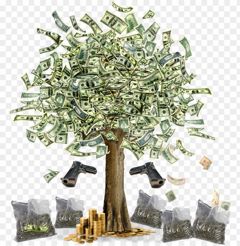 free PNG sss - money tree images hd PNG image with transparent background PNG images transparent