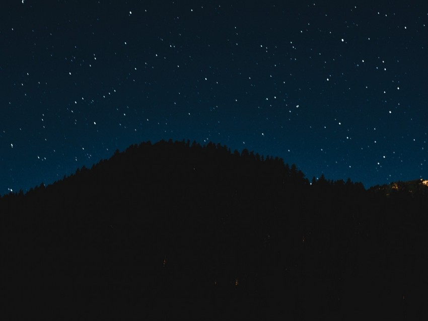 free PNG starry sky, night, trees, stars, shine, sky background PNG images transparent