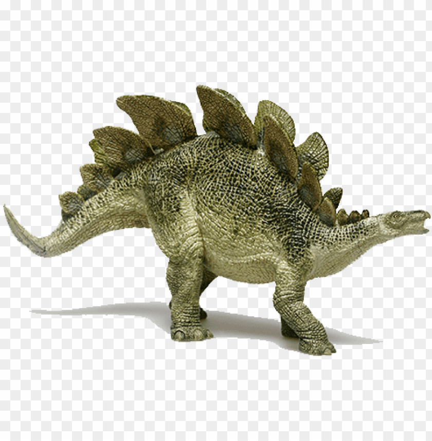 free PNG stegosaurus - dinosaur from jurassic period PNG image with transparent background PNG images transparent