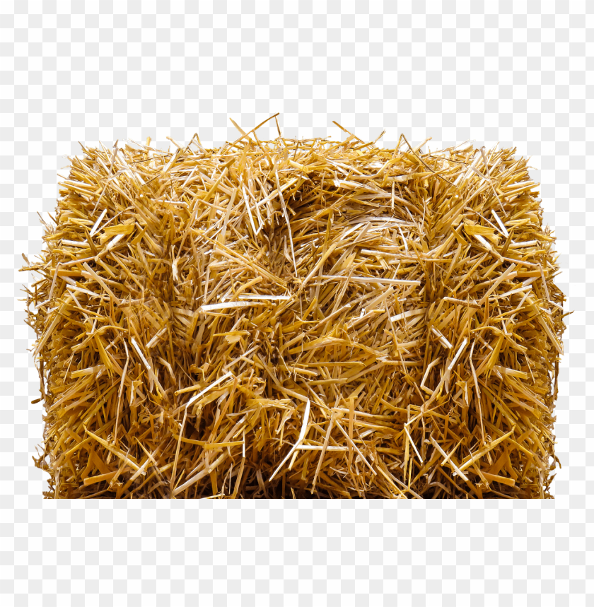 free PNG straw bale PNG image with transparent background PNG images transparent