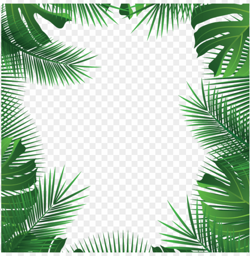 free PNG summer beach tropical leaves frame, summer leaves, - tropical frame PNG image with transparent background PNG images transparent
