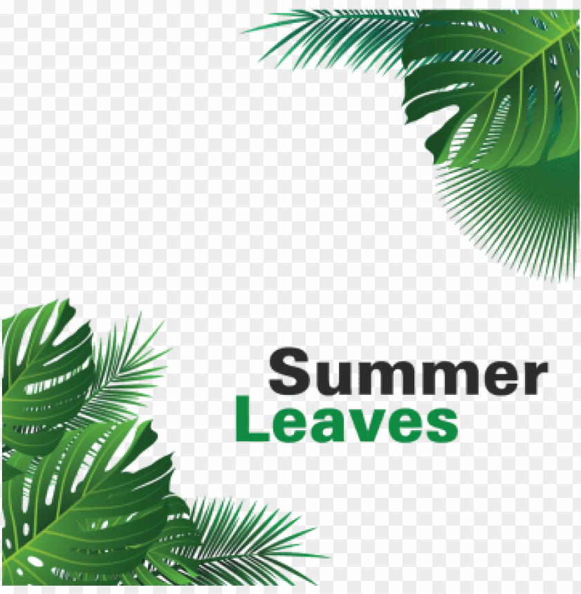 free PNG summer tropical leaves hanging, summer leaves, tropical, - portable network graphics PNG image with transparent background PNG images transparent