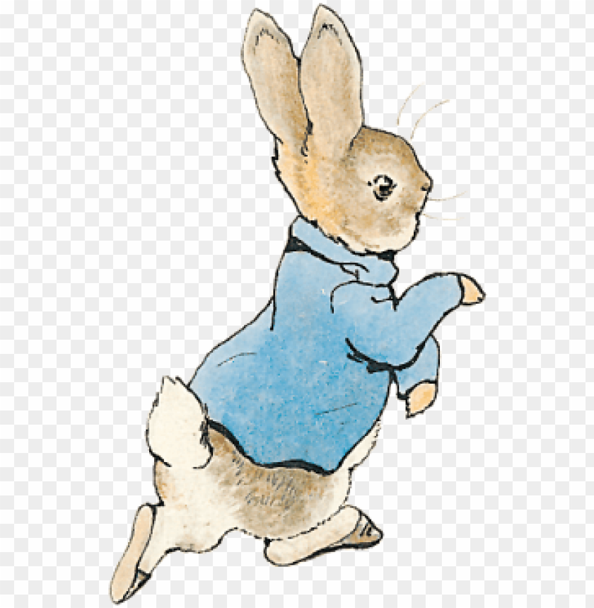 free PNG swipe across or scroll down to discover more about - pierre lapin [book] PNG image with transparent background PNG images transparent