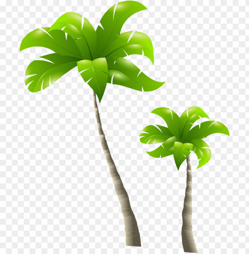 free PNG tall tree short tree PNG image with transparent background PNG images transparent