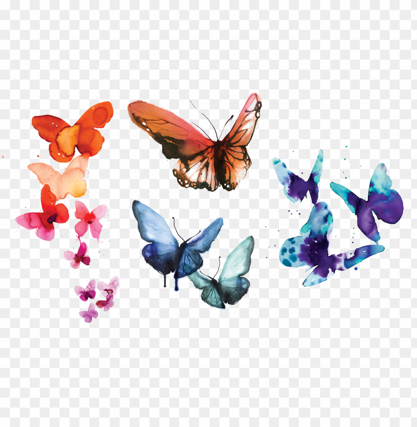 free PNG tattly temporary tattoos, watercolor butterflies PNG image with transparent background PNG images transparent