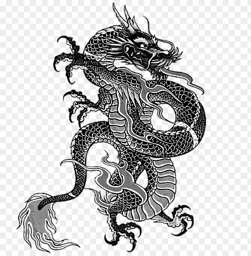 Tattoo Irezumi Dragon Dragonballz Yakuza Ninja Backtatt Chinese Dragon Wallpaper For Android Png Image With Transparent Background Toppng Kazuma kiryu yakuza 0 irezumi japan tattoo, japan png clipart. tattoo irezumi dragon dragonballz