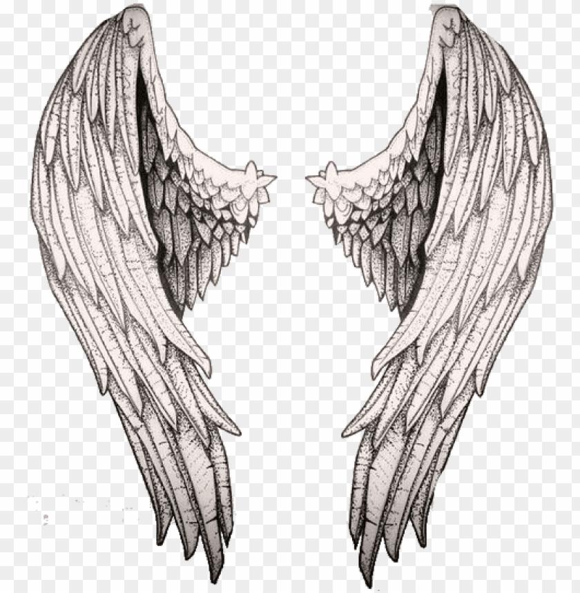 free PNG técnicas de dibujo, dibujo cuerpo, manos dibujo, acuarela, - alas de angeles dibujo a lapiz PNG image with transparent background PNG images transparent
