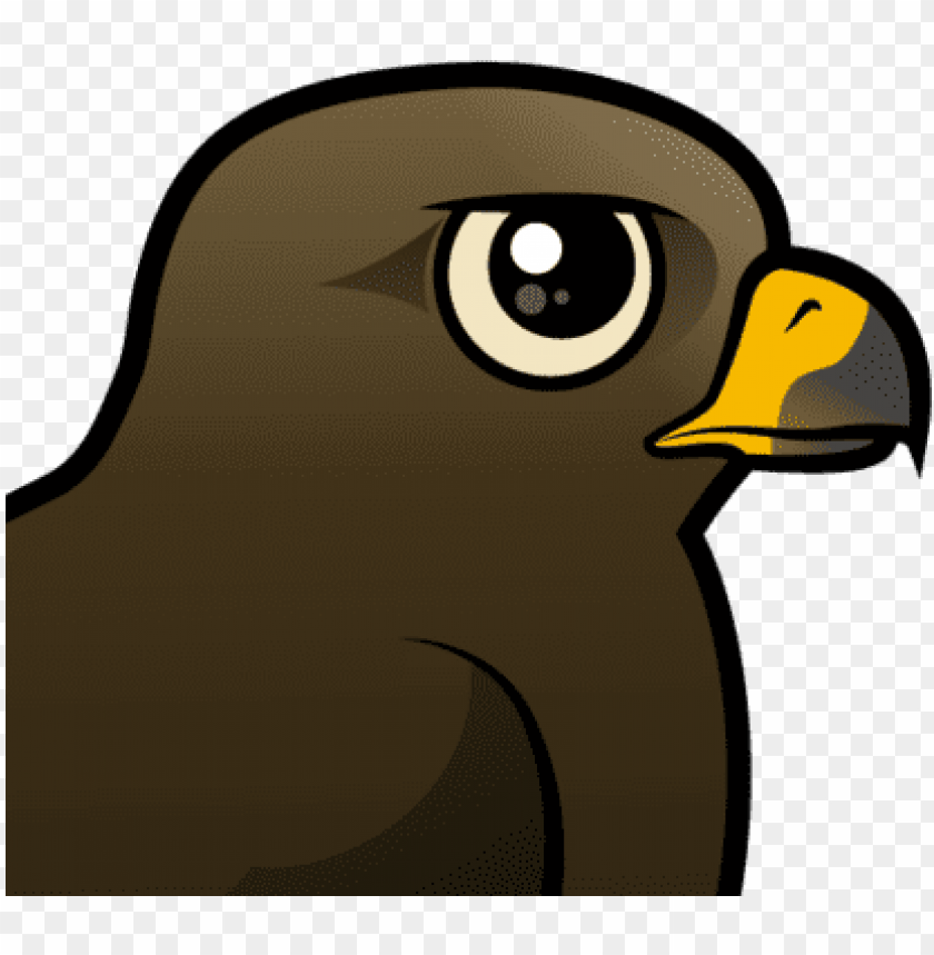 free PNG the black kite is a widespread species throughout the - black kite PNG image with transparent background PNG images transparent