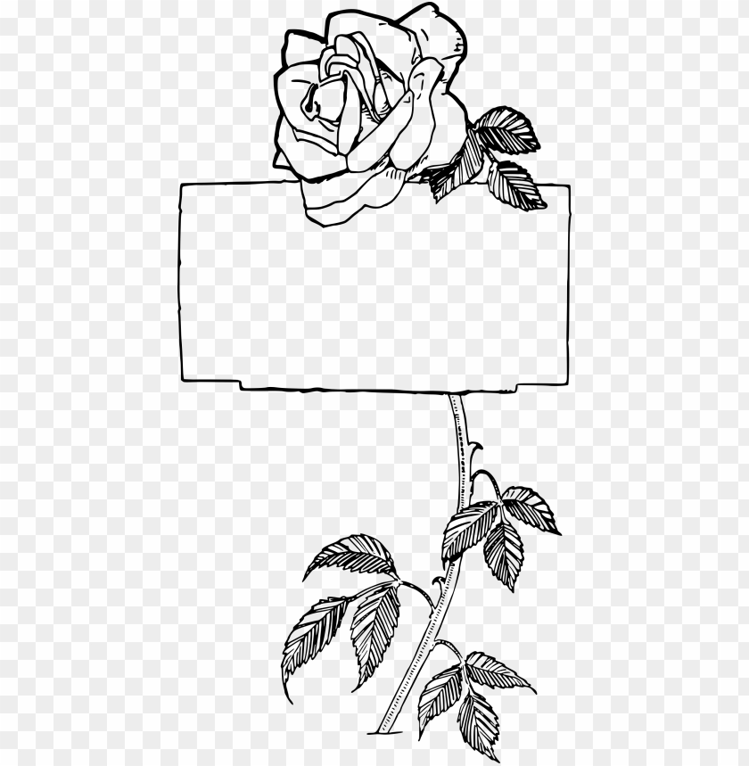 free PNG this free icons png design of rose frame PNG image with transparent background PNG images transparent