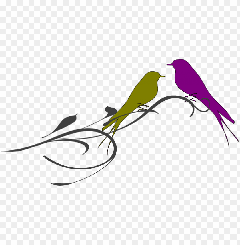 free PNG this freedesign of love birds on a branch PNG image with transparent background PNG images transparent