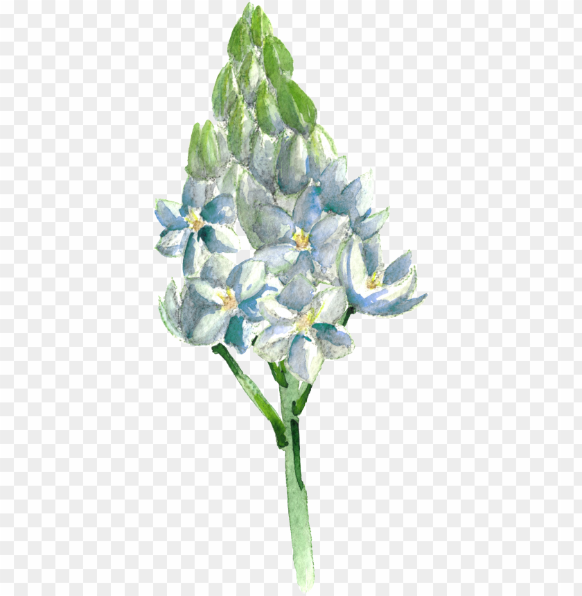 free PNG this graphics is hand painted blue flowers transparent - portable network graphics PNG image with transparent background PNG images transparent