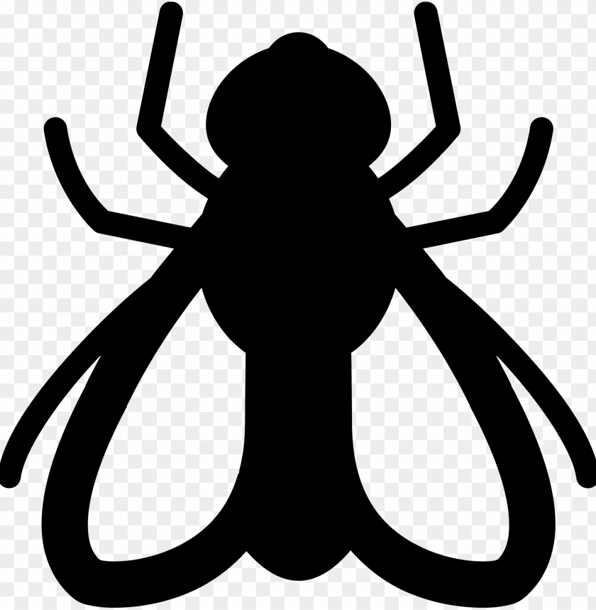 free PNG this is a drawing of a fly - fly icon png - Free PNG Images PNG images transparent
