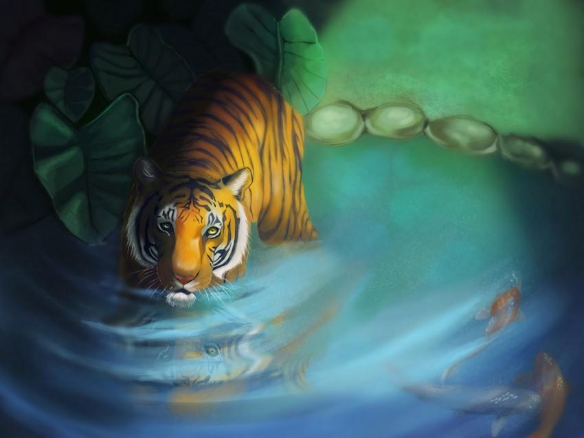 free PNG tiger, lake, art, glance, predator background PNG images transparent