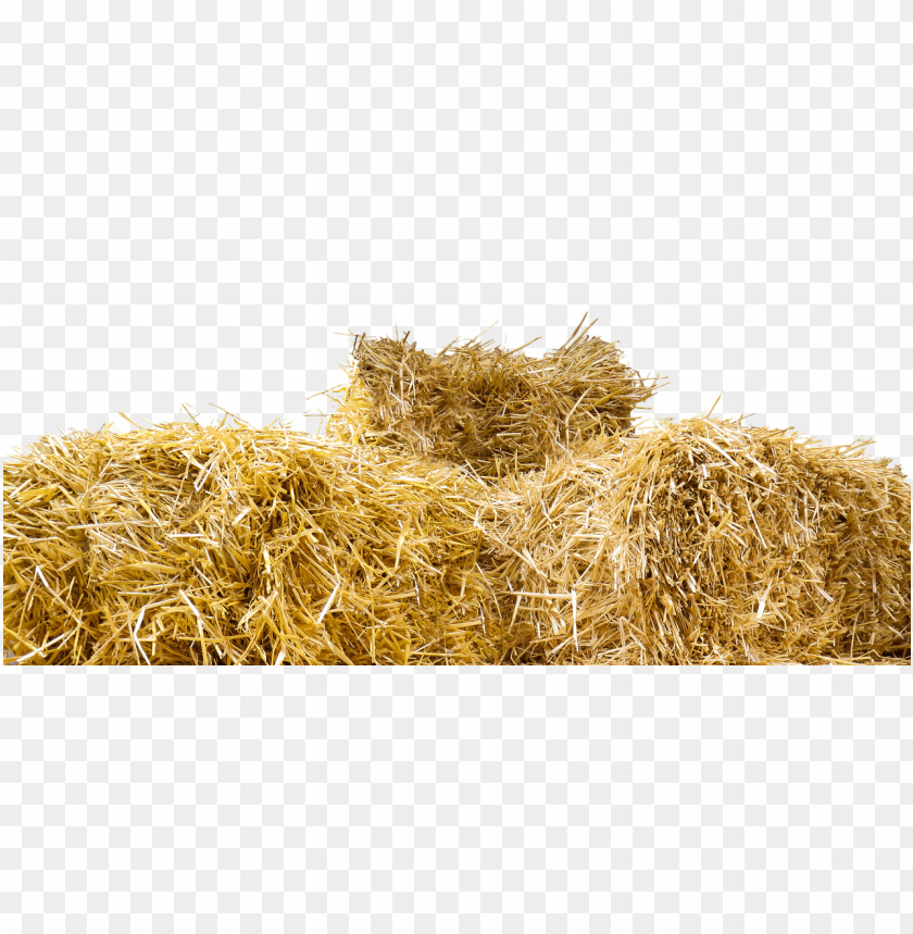 free PNG top of straw bales PNG image with transparent background PNG images transparent