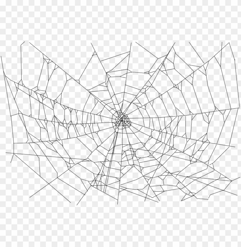 transparent background spider web PNG image with transparent background@toppng.com