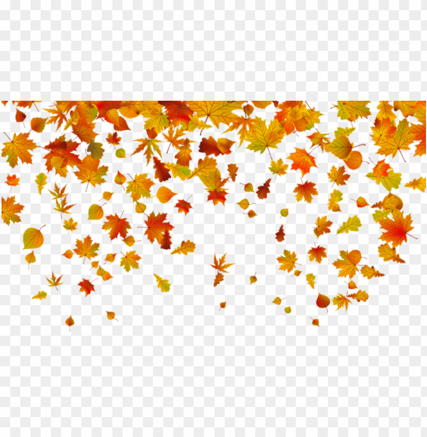 Download Transparent Fall Leaves Clipart Png Photo Toppng