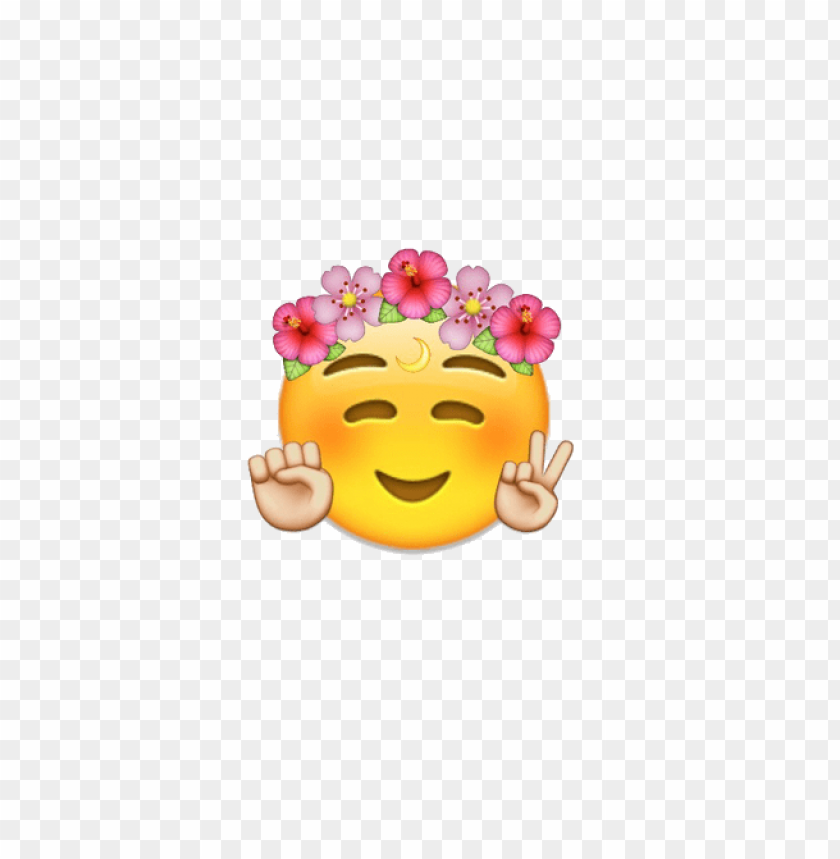 Transparent Flower Crown Tumblr Png Image With Transparent Background Toppng To created add 32 pieces, transparent flower crown images of your project files with the background cleaned. toppng