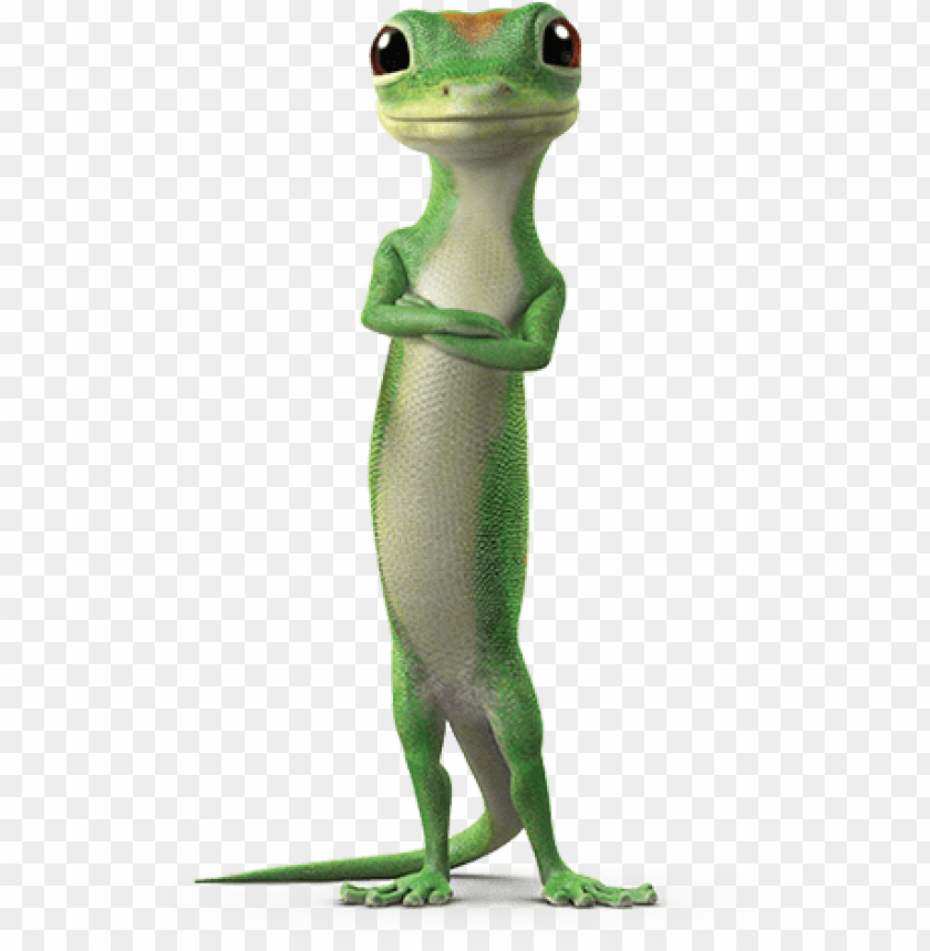 Car Insurance Gecko - Cars Models