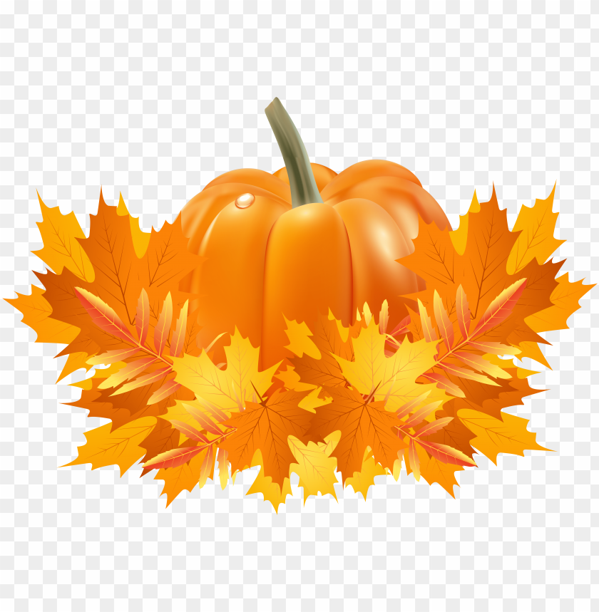 free PNG transparent library apple and pumpkin page border - clipart pumpkin fall leaves PNG image with transparent background PNG images transparent