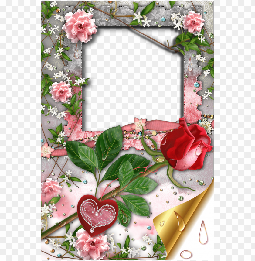 free PNG transparent romantic frame with rose and heart background best stock photos PNG images transparent