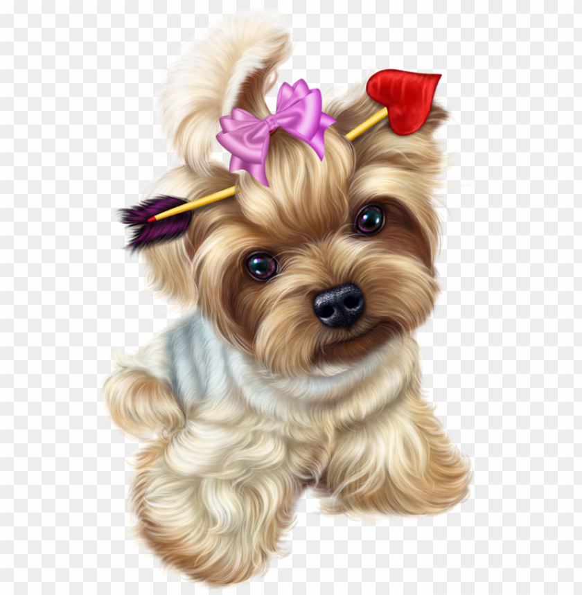 transparent yorkie png transparent yorkie - transparent background yorkie clipart PNG image with transparent background@toppng.com