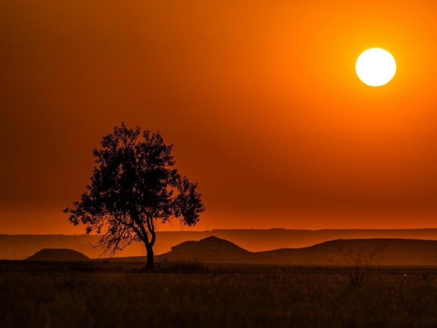 free PNG tree, hills, sunset, horizon, landscape background PNG images transparent