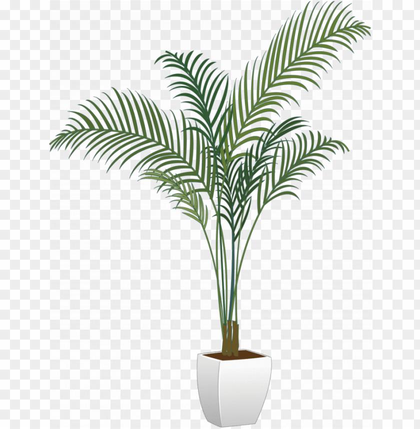 free PNG tree, plants & flower - transparent potted plants PNG image with transparent background PNG images transparent