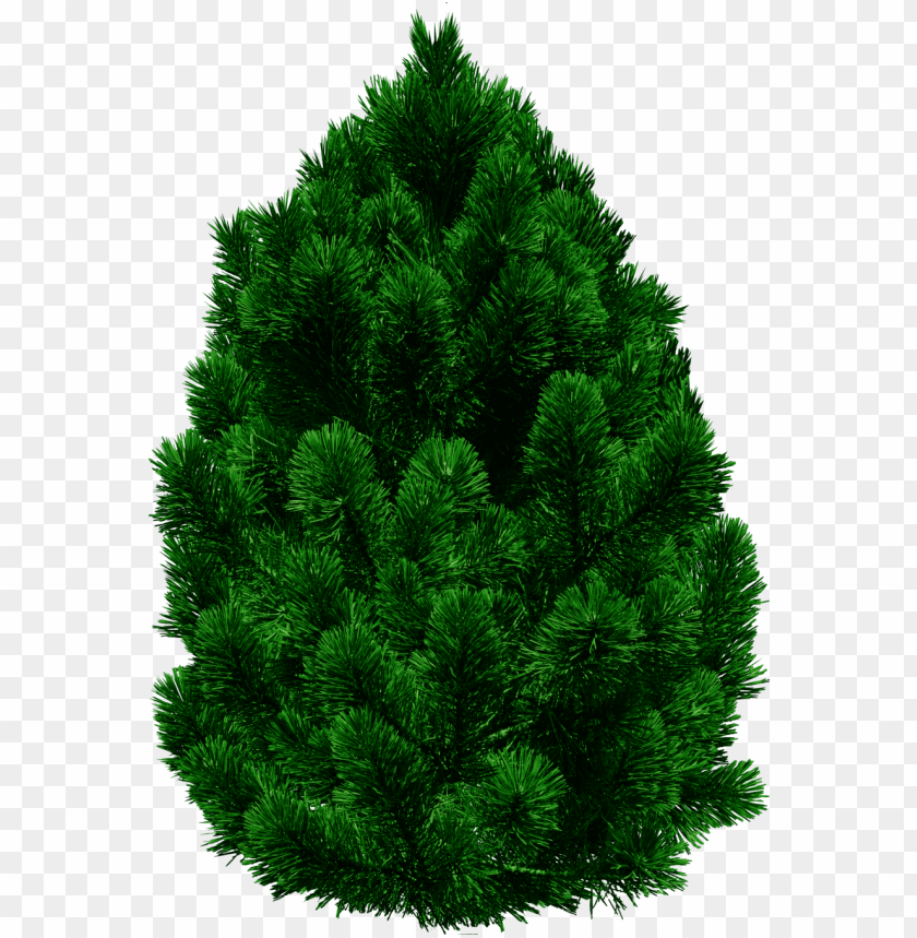 free PNG tree png images png tree png hd free png images png - tree png for picsart PNG image with transparent background PNG images transparent