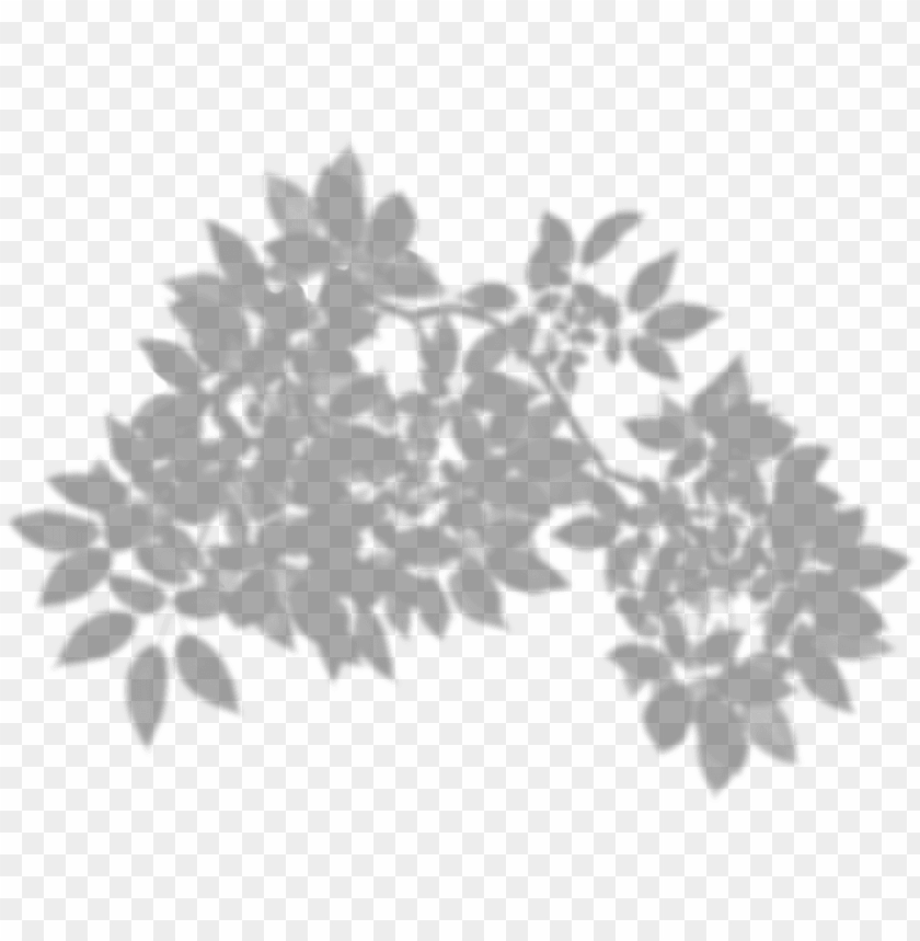 free PNG tree shadow png clip art - transparent leaf shadow PNG image with transparent background PNG images transparent