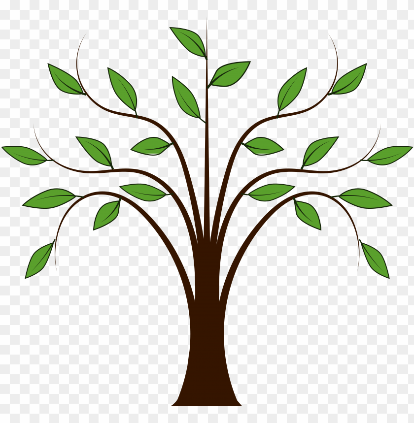 Trees Family Tree Clipart Free Images Cartoon Tree With Leaves Png Image With Transparent Background Toppng