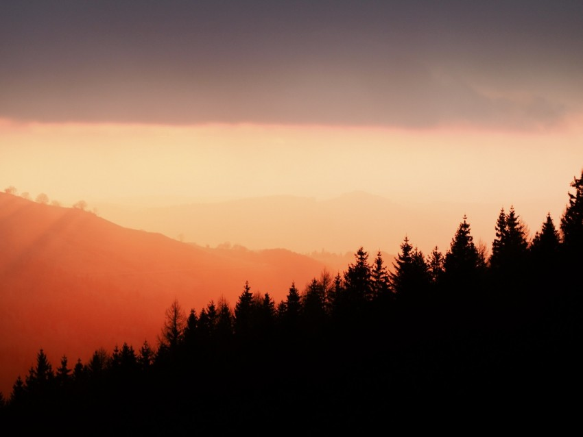 free PNG trees, silhouettes, fog, sunset, sky, slope background PNG images transparent