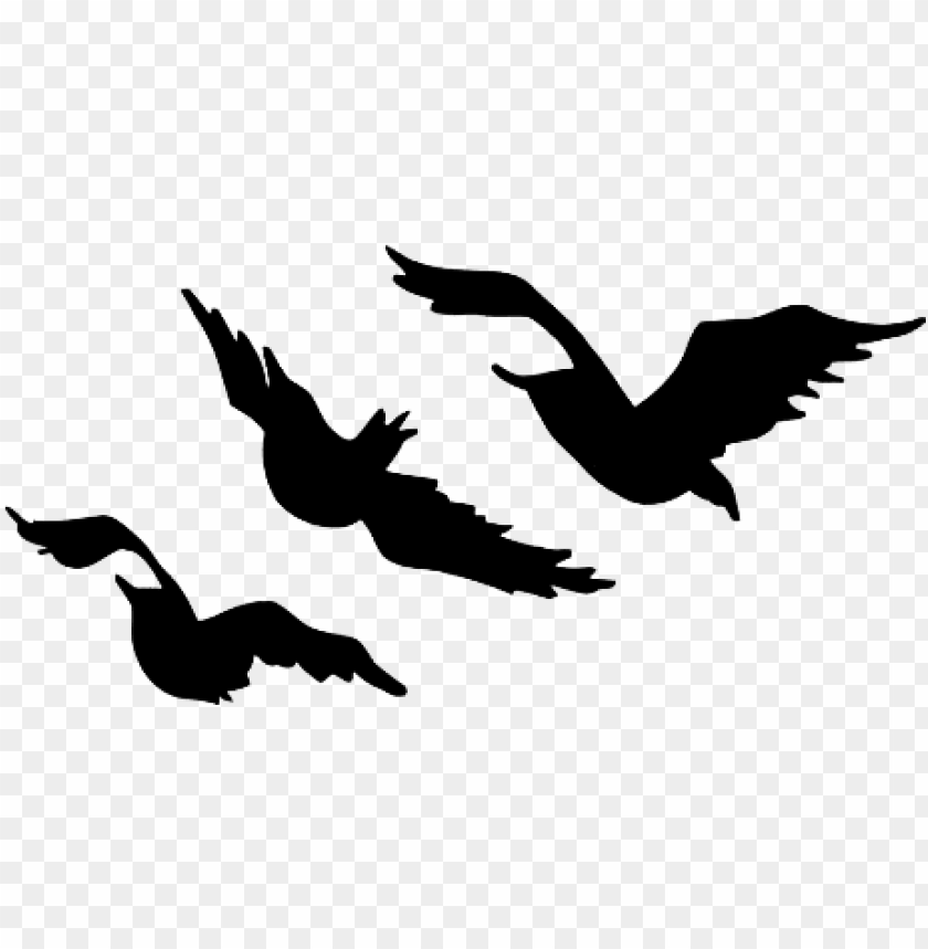 Tris S Bird Tattoos Divergent Tris Tattoo Template Png Image With Transparent Background Toppng Download 5,467 tattoo designs free vectors. tris s bird tattoos divergent tris
